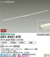 DSY-4557ATE